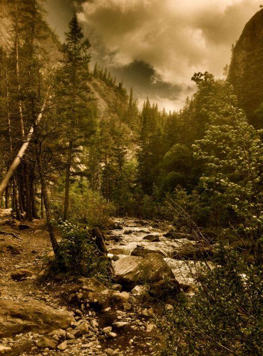 Up Heart Creek