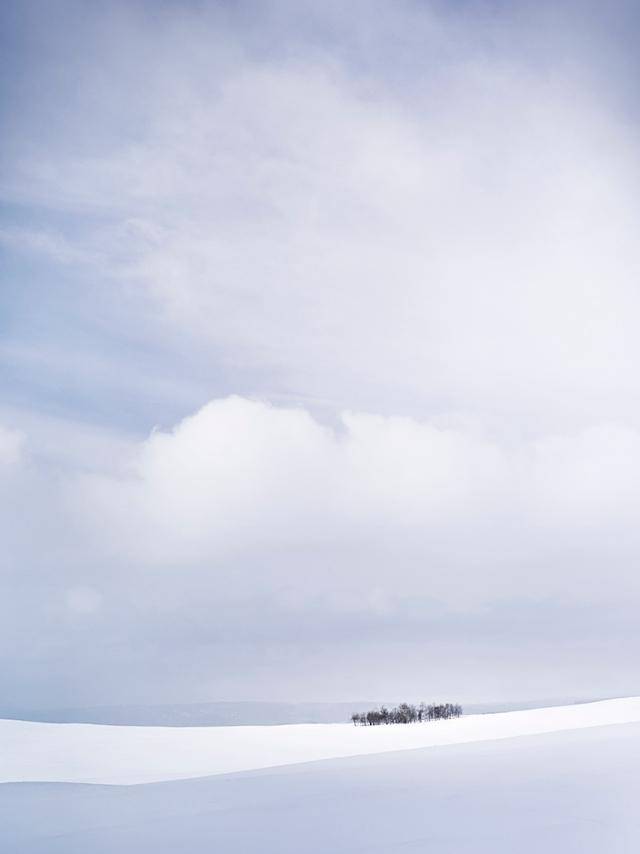 Winter Grove Online