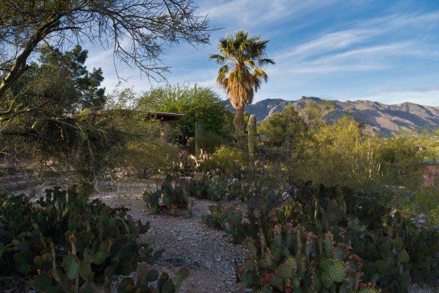 Tucson Day 1-6